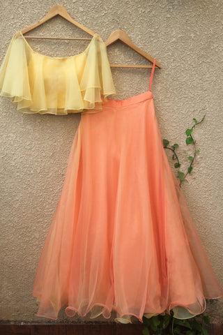 Cantaloupe Yellow Off Shoulder Blouse & Peach Net Skirt