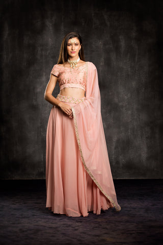 The Pink Day Dreamer Lehenga Set Front