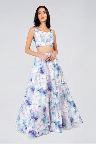 Sleeveless Blue & White Humming Bird Print Top & Round Flare Skirt Lehenga Set FRONT