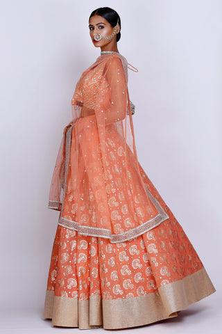 Rust Orange Lehenga Set