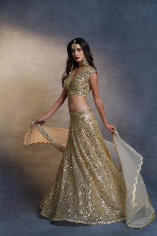 Gold Mirror Lehenga Choli Set Front