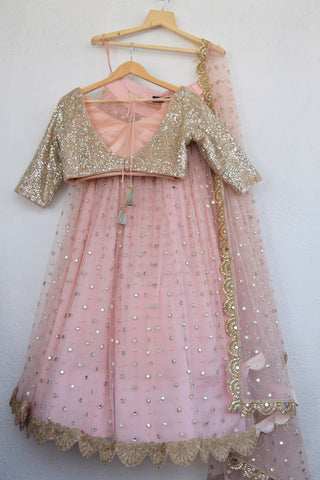 Blush Pink Mirror & Pearl Lehenga With Apricot Blush  Mirror  Blouse