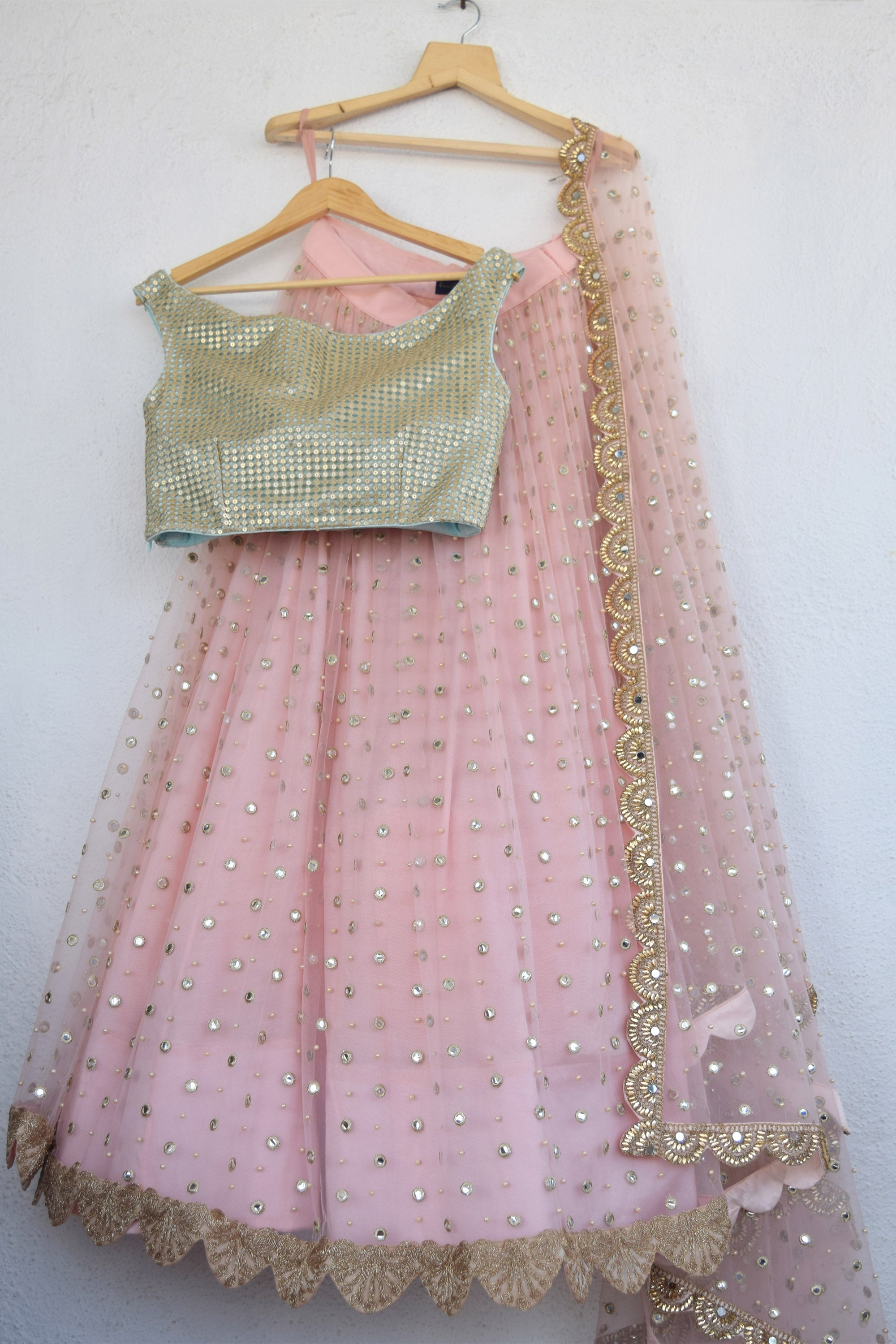 Blush Pink Mirror & Pearl Lehenga With Artic Blue Gold Cutwork Blouse BACK