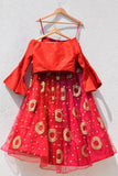 Red Ombre Lehenga  With Cutout Sleeve Croptop BACK
