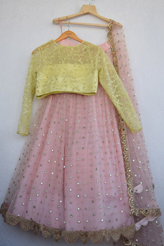 Blush Pink Mirror & Pearl Lehenga With Semi Transparent Blouse & Pearl Dupatta