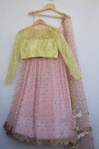 Blush Pink Mirror & Pearl Lehenga With Semi Transparent Blouse & Pearl Dupatta FRONT