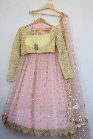 Blush Pink Mirror & Pearl Lehenga With Butter Yellow Blouse