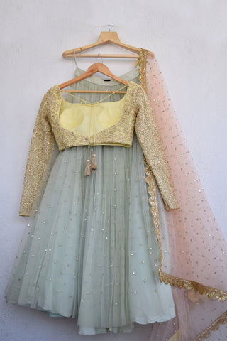 Turquoise Blue Abla Lehenga With Lemon Butter Yellow Blouse