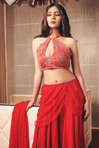 Red Embroidered Draped Saree