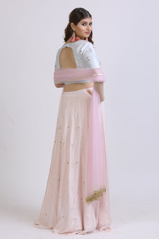Powder Blue & Baby Pink Resham Embroidered Lehenga Blouse