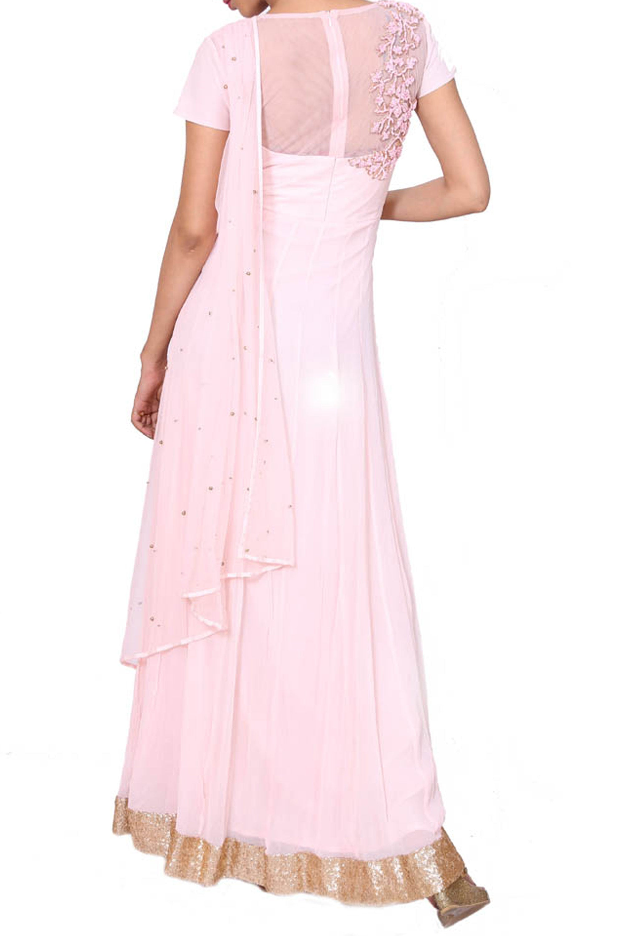 Intricately Embroidered Powdery Pink Gown Back