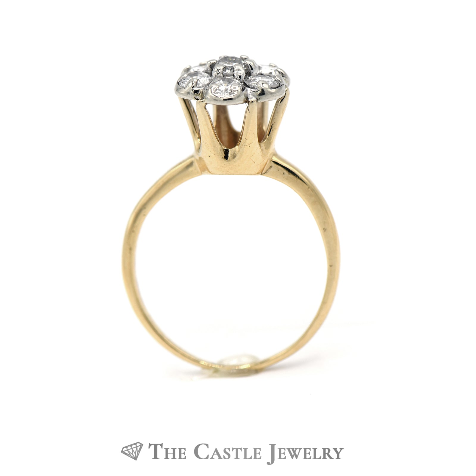 Round Brilliant Cut 7 Diamond 3/4cttw Cluster Ring in 14K Yellow Gold-1