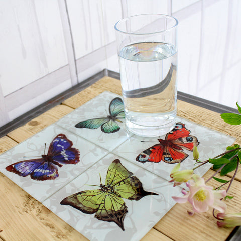 Butterflies Glass Coaster Set by Terrarium