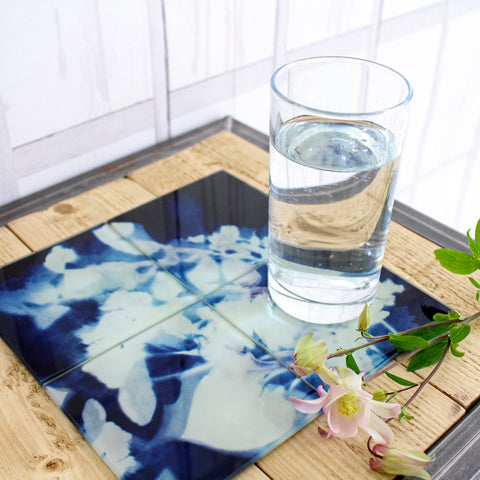 Floral Cyanotype Glass Coaster Set by Terrarium