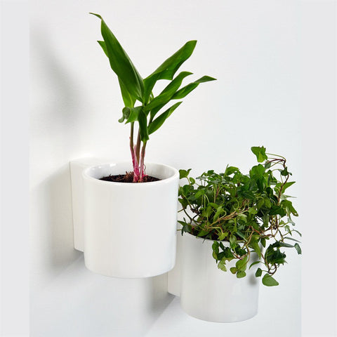 Hover Planter by Thelermont Hupton