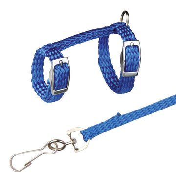 Harness with Lead for Ferrets and Rats