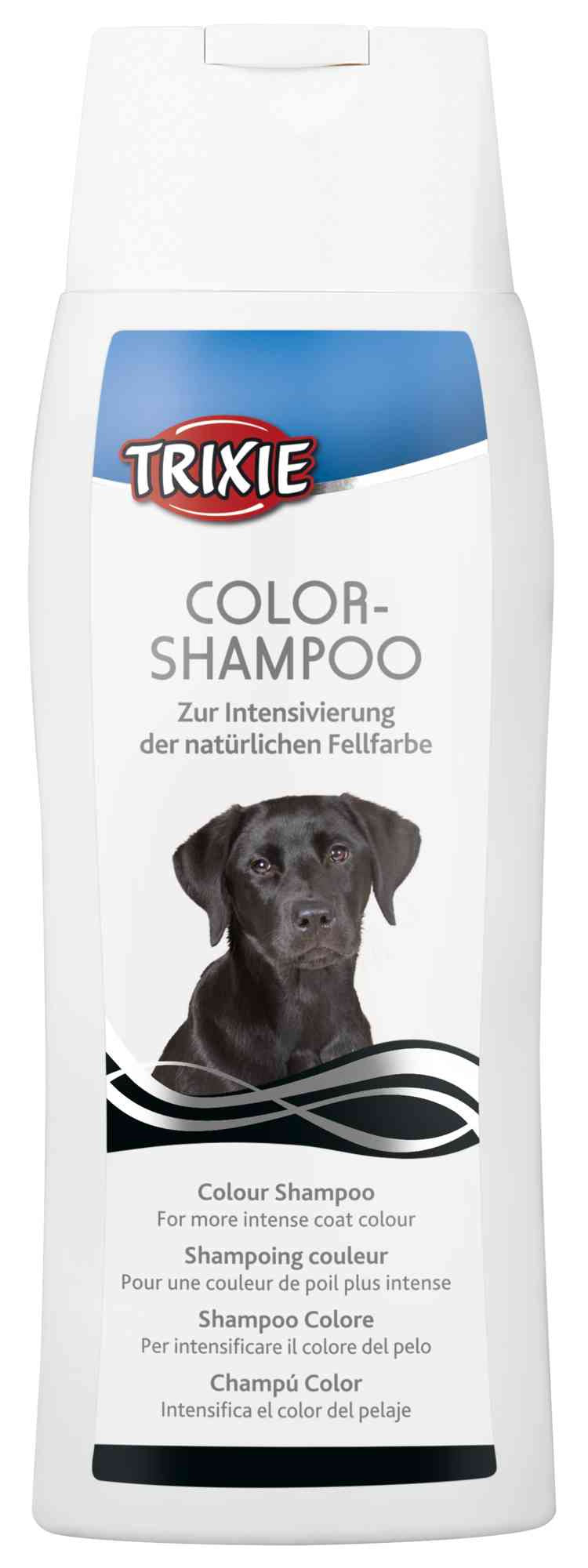 Colour Shampoo