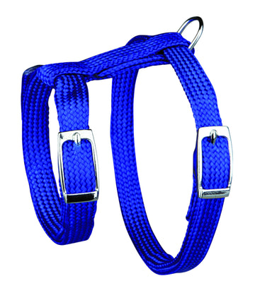 Harness with Leash, Nylon