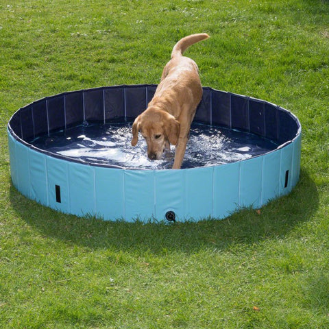 Trixie - Dog Pool