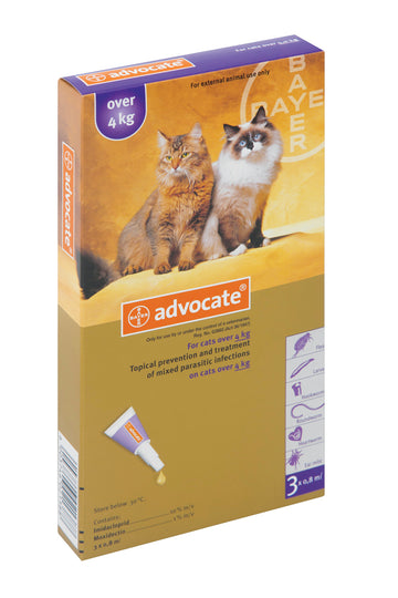 Advocate for Cats over 4 Kgs