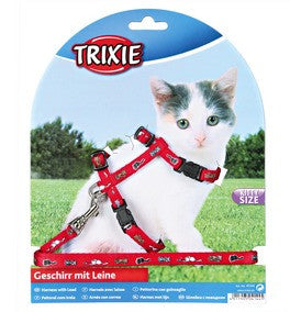 Kitten Harness with Lead