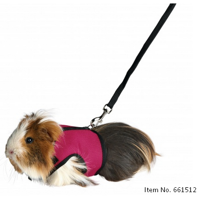 Soft Harness with Leash