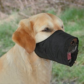 Muzzle, Polyester
