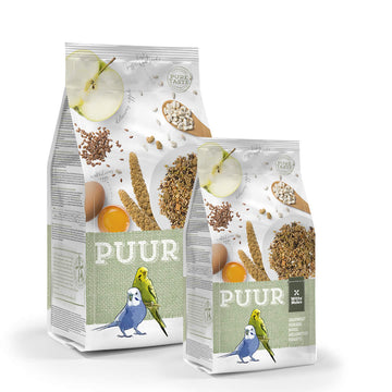 Puur Budgie