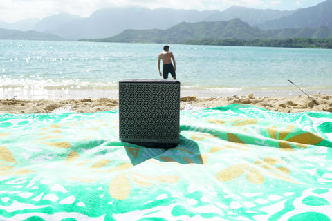 Block Party Speaker