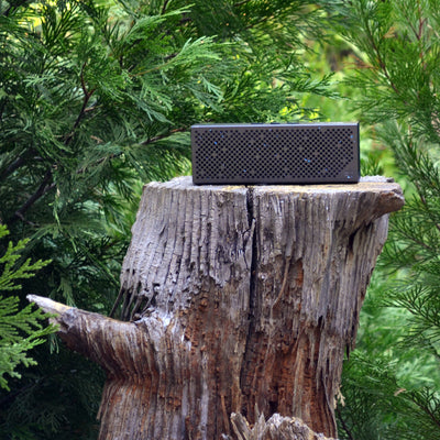 Gunmetal Crasher Slim Bluetooth Speaker on Tree Stump