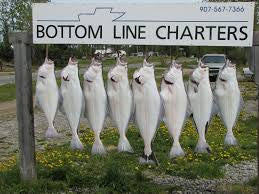 BOTTOM LINE CHARTERS $275.00 CERTIFICATE VALID FOR 1 FISHING CHARTER FOR (1) PERSON.