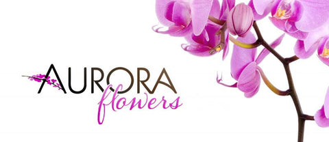 AURORA FLOWERS $100.00 GIFT CERTIFICATE VALID TOWARDS FLORAL ARRANGEMENT OF YOUR CHOICE