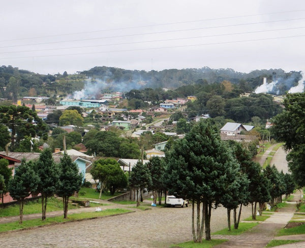 ilopolis brazil with yerba mate factories steaming