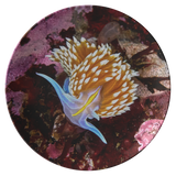 Opalescent Nudibranch Thermosaf© Dinner Plate - Boat/Picnic Ware - Plastic Dish - Underwater Photo - Ocean/Sealife - Scuba Gift