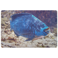 Midnight Parrot Fish and Remora Eel Doormat/Floor Mat