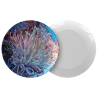 Giant Anemone Thermosaf© Dinner Plate - Picnic/Boatware - Coral Reef Underwater Photo Dish - Ocean/Nautical Theme- Scuba Diver Gift