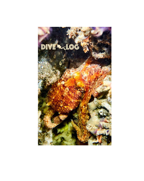 Red Octopus Scuba Dive Log Book - Diving Journal/Logbook