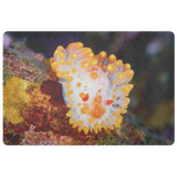 Cocerell's Dorid Nudibranch Photo Doormat/ Floor Mat