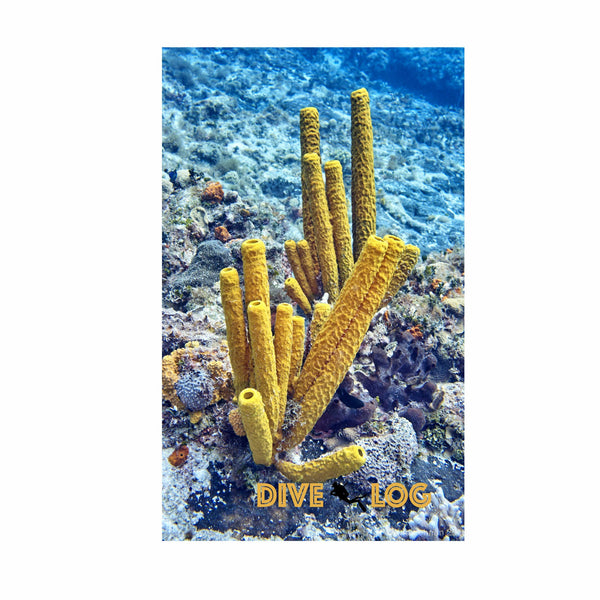 Yellow Sponge Scuba Dive Log Book - Coral Reef Diving Journal/Logbook