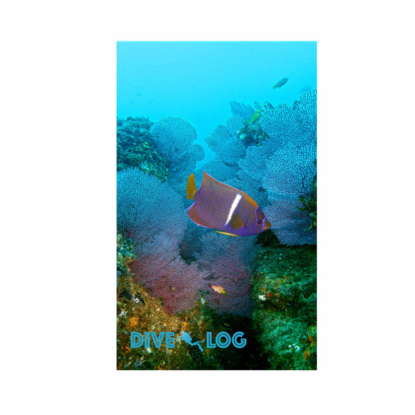 Angelfish in Reef Scuba Dive Log Book - Diving Journal/Logbook