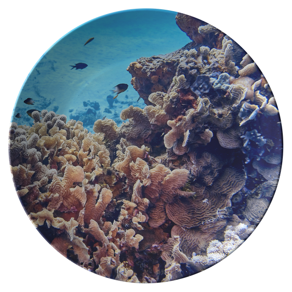 Coral Reef ThermoSaf Dinner Plate - Underwater Photo Dish - Ocean/Nautical Theme -Scuba Gift -Boat/Picnic Ware