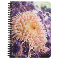 Stubby Rose Anemone & Purple Urchin Spiral Bound Lined Notebook/Journal
