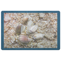 Sea Snail Doormat - Purple Olive Snail Underwater Photo - Sea Life/Ocean/Nautical Decor - Beach Home