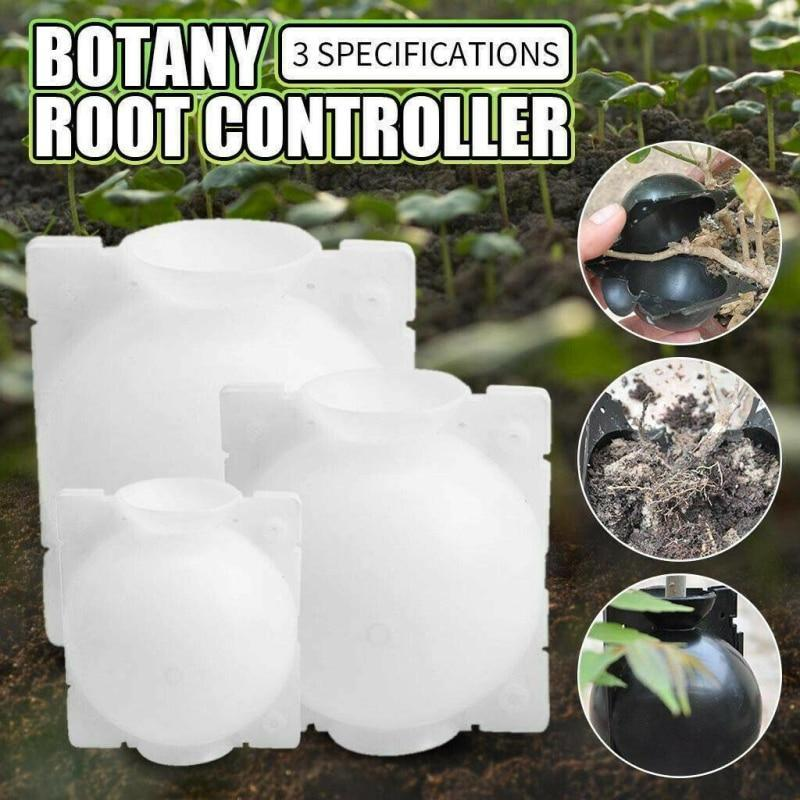 5 PCS Plant Root Growing Box - The Brotherhood shop