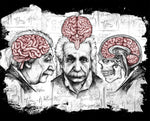Art | Apothic Ink - Einstein Brain | 8x10 Print