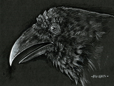 Original Art | Raven | 6x8 Original Pencil Drawing