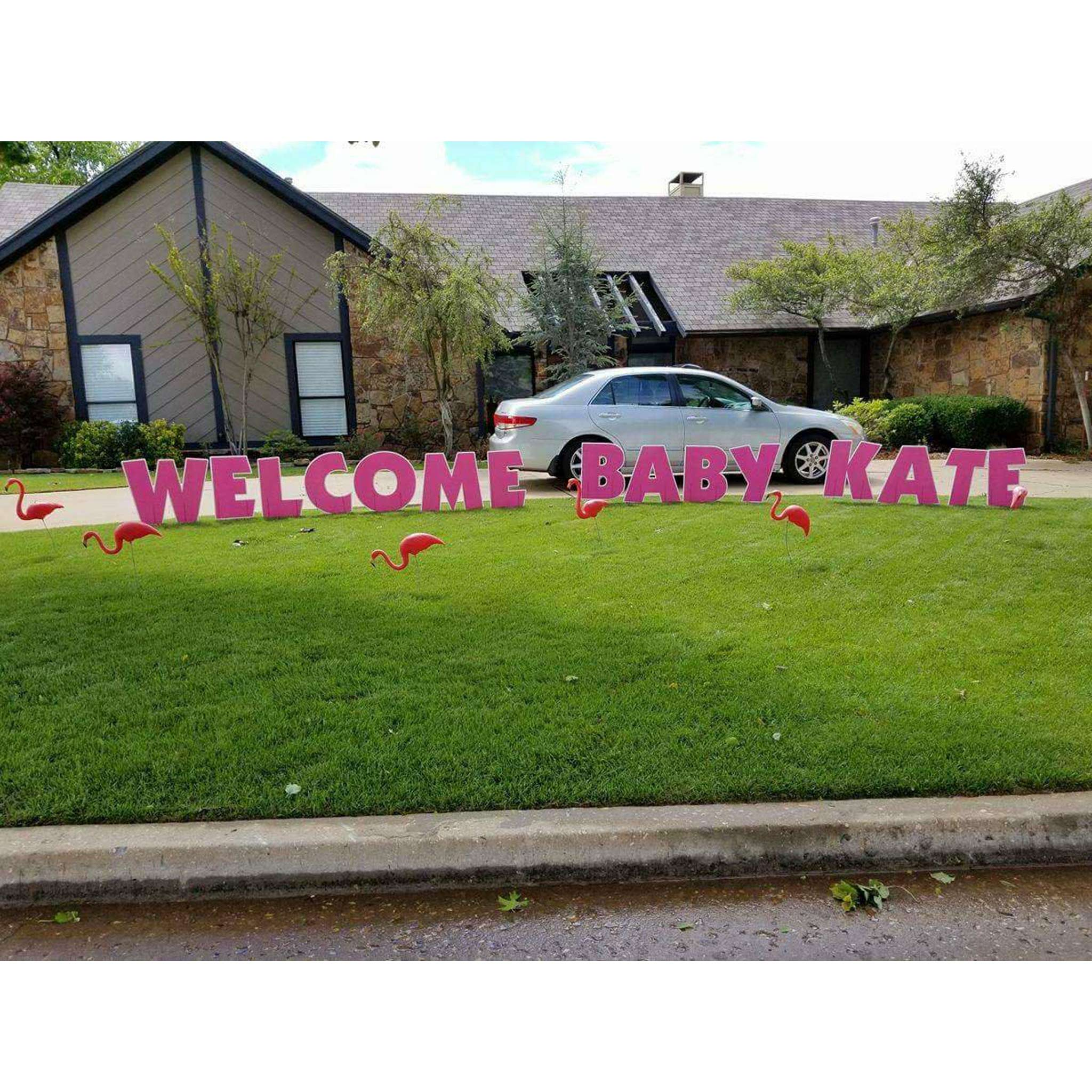 Yard Letters, Pink Welcome Home Baby with Flamingos