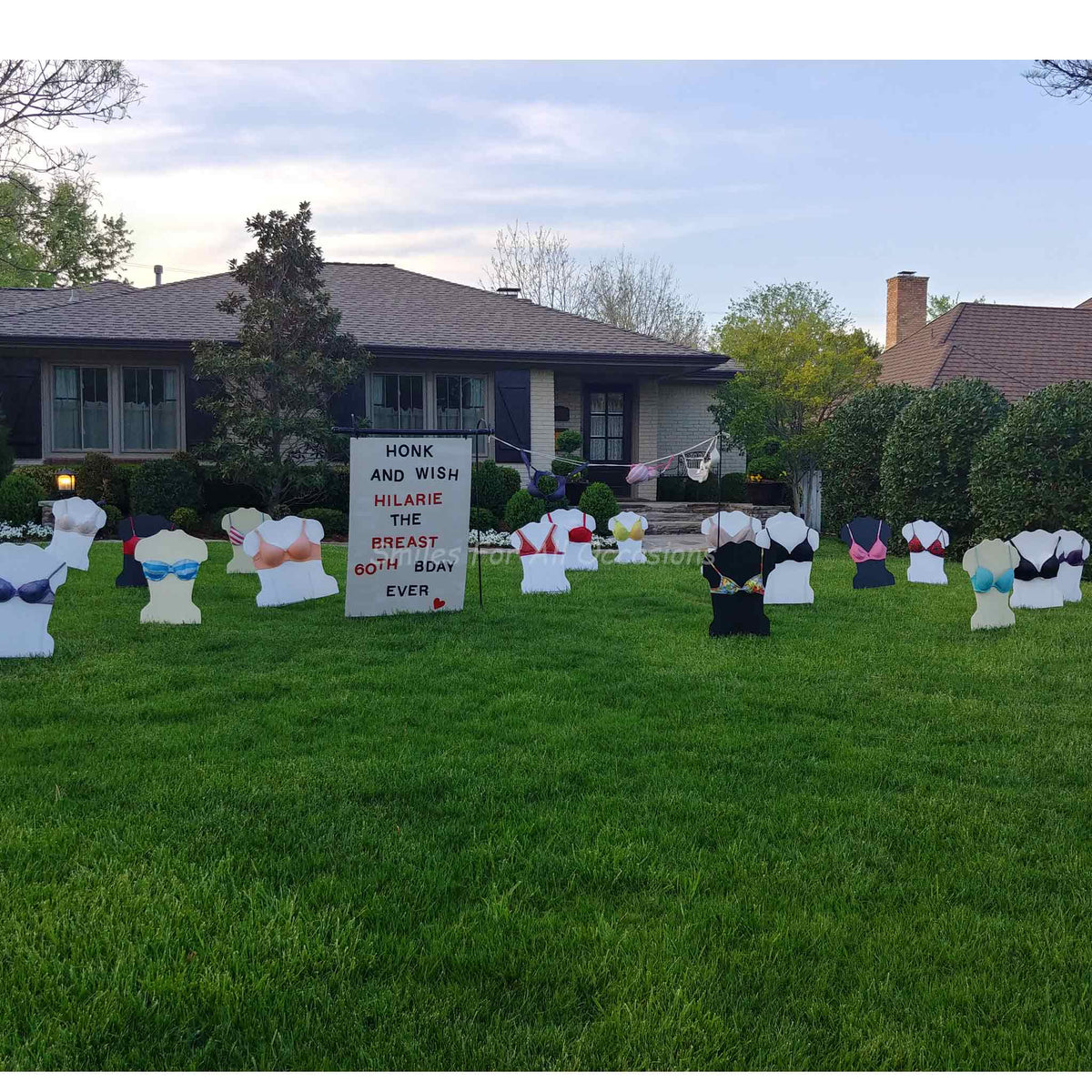 Birthday Yard Signs Real Bras Smiles For All Occasions