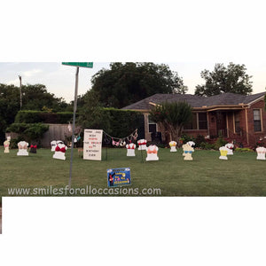 Bras in front yard with Birthday Signs