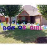 Boy or Girl Yard Signs - Blue and Pink Rattles in Front Yard